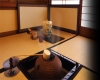 Với những nét tinh túy trong nghệ thuật trà đạo Nhật