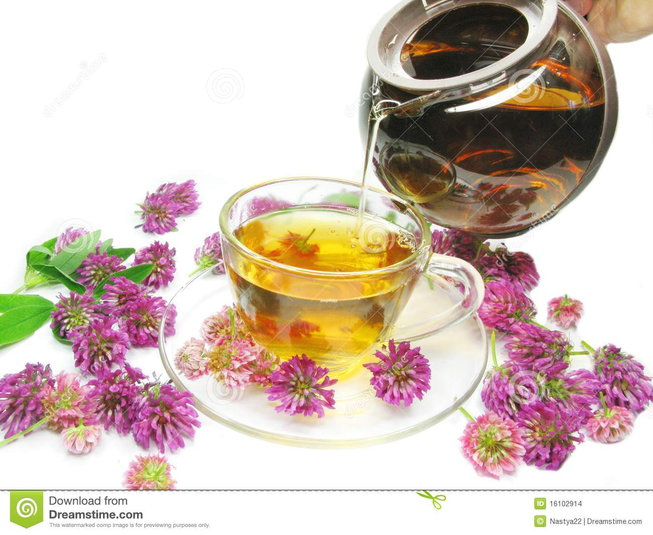 herbal-tea-clover-flowers.jpg