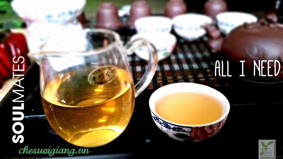 Những lý do nên uống trà xanh mật ong hằng ngày