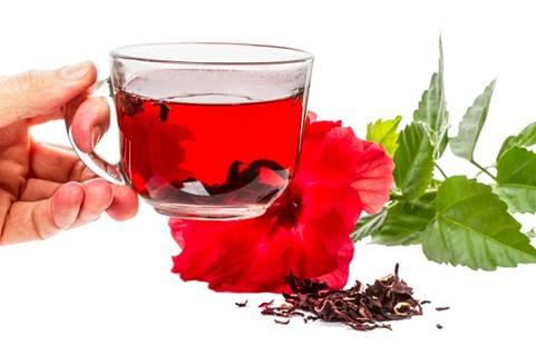15 loại trà thảo dược dành cho mọi loại bệnh